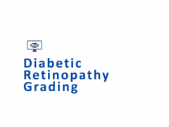 Diabetic Retinopathy Grading Course